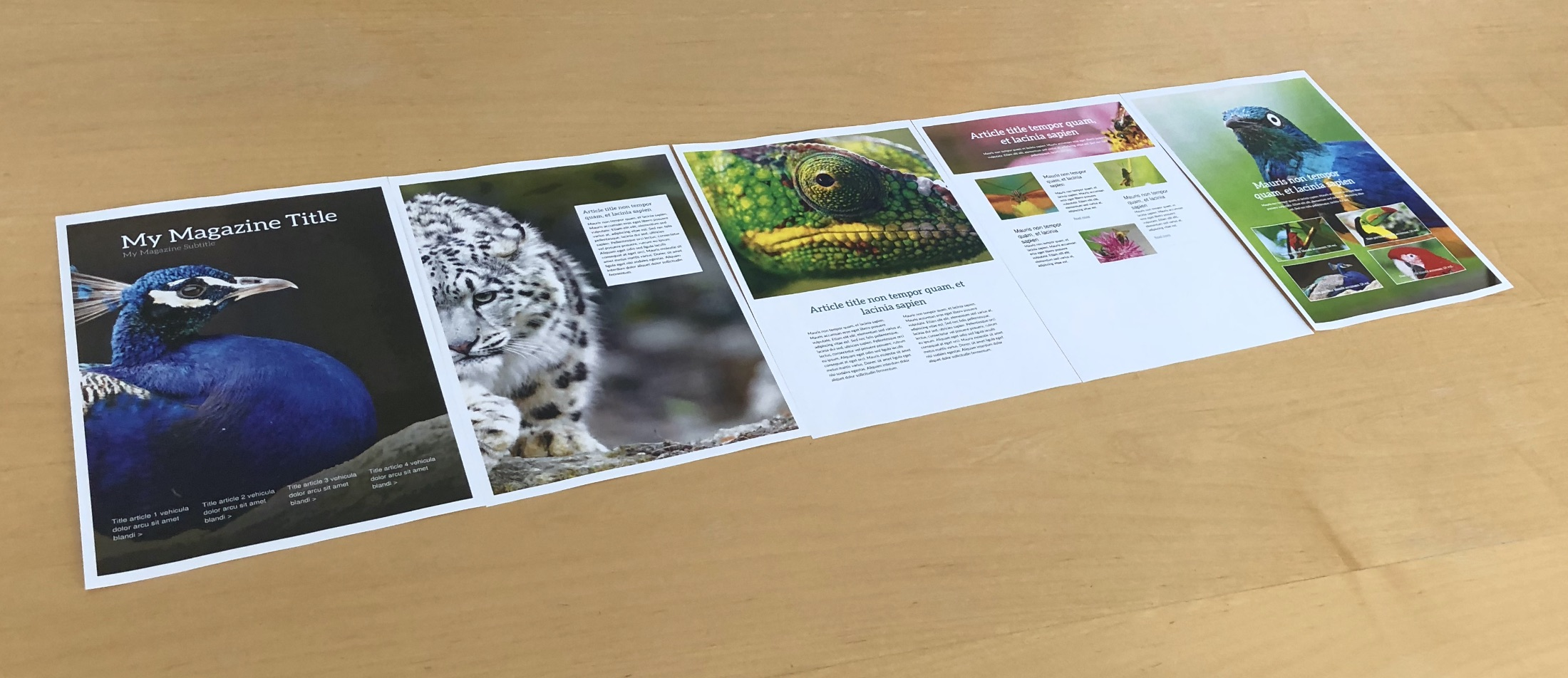 Print Magazine Pdf